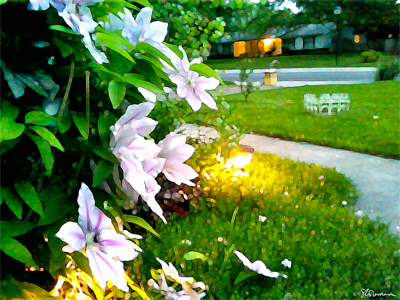 home, artofageniusmind, suzanne, coleman, art, painting, digital, garden, flowers, flower, clematis, pink, white, green, grass, yard, midwest, plant, nature, outdoors, outside, art,