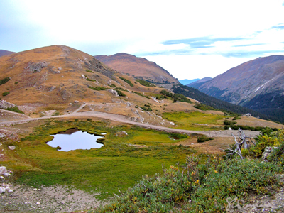 reflection, rocky, rockies, mountain, national, park, mountain top, view, rolling, hills, dusk, lake, pond, water, sky, wetland, melt, plant, color, scrub, tundra, art, photo, photography, suzanne, coleman, artofageniusmind