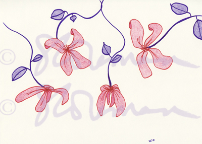 purple, red, flowers, drawing, copyright, floppy, design, art, suzanne, coleman, sketch, pencil, colored, nature, plant, signed