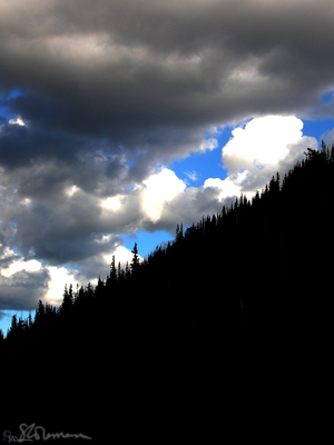 rocky, rockies, mountain, trees, clouds, sky, climbing, cumulonimbus, cumulous, blue, white, black, outline, tree line, edge, 45 degrees, RMNP, national park, colorado, denver, nature, art, photo, outdoors, photography, high, altitude, suzanne, coleman, artofageniusmind, conservation, preservation