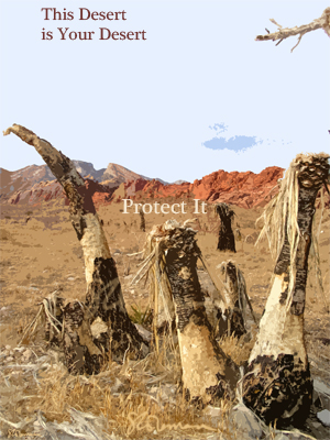 desert, your, this, poster, graphic, art, design, image, nevada, photo, dry, plants, mountain, red, rock, red rock, park, preserve, conserve, dead, burned, text, protect, it, suzanne, coleman, artofageniusmind, palms, signed